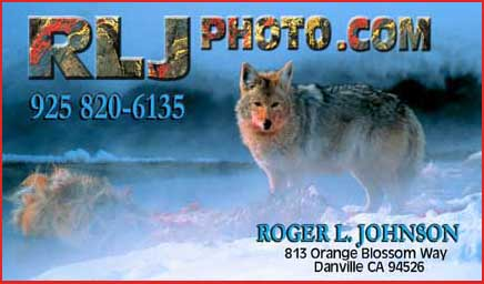 Stock Photography and Gallery of Collectors Edition Prints by Roger L. Johnson